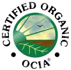 certificado_ocia
